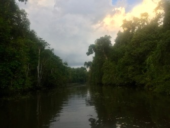 fiume Kinabatangan